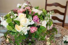 ferns, sedum, roses, stock, honeysuckle, peonies