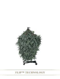 BH Balsam Fir Flip Tree™ | Balsam Hill