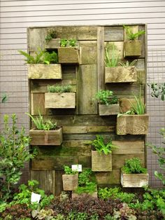 Reclaimed wood pallet vertical garden wall