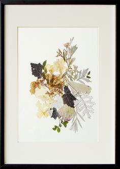 Art wall print Pressed flower art Botanical print Flower print abstract Original prints Wall decor dried flowers art Framed pictures Collage by FloralCollage on Etsy