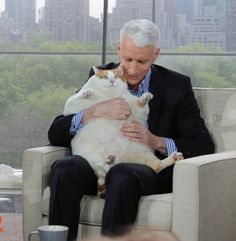 Anderson Cooper and a giant cat! Love it!