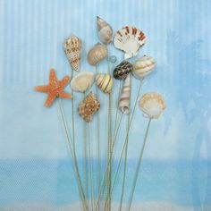 Great addition to your bouquets or centerpieces to tie in your beach or ocean theme