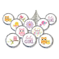 Sweet Baby Girl Owl and Tweet Baby Shower Stickers for Hershey Kisses (Set of 324)
