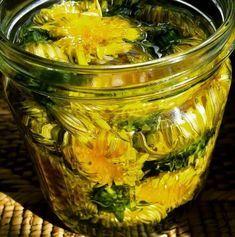 postup: V suchém slunečném počasí nasbírejte květy pampelišky, nechte krátce vysušit na sluníčku, aby vylezli broučci a následně je přendejte do nádoby. Zalijte květy pampelišky až po vrchol s rostlinným olejem a zavřete nádobu. Dejte na slunné místo na 3 týdny. Jakmile květiny začnou hnědnout, protlačte olej přes gázu do sterilizované láhve z tmavého skla. …