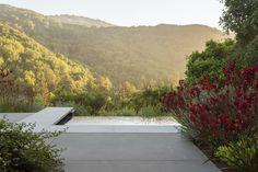 Landscape Elements, Landscape Architecture, Landscape Design, Minimalist Landscape, Contemporary Landscape, Growing Succulents, Succulents Garden, Simple Outdoor Kitchen, Indoor Outdoor Fireplaces