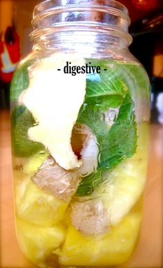 Ingredients:  1 Cup Pineapple(sliced or cubed)  5-7 Sprigs Fresh Mint  3″ Ginger (sliced or cubed)  2-4 Lychees (pitted, sliced)  1″ Fresh or 1 Tbsp Dried Lemongrass  1g Scoop Probiotics, or 1 Tbsp Kefir (optional)  Pinch Himalayan Crystal Salt  750ml – Purified water + 1 Tsp Fresh Lemon Juice  Directions:   1. Muddle lychees, ginger and mint in a small bowl and add to a large 1 litre glass or mason jar, add remaining ingredients and stir  2. Refrigerate for 4-6 hours