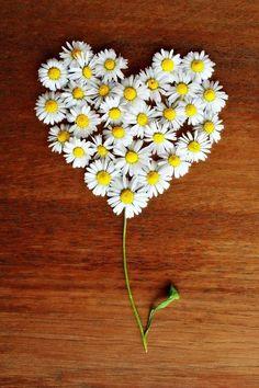 Rangoli Designs Flower, Flower Rangoli, Heart In Nature, Heart Art, Flower Phone Wallpaper, Heart Wallpaper, Daisy Love, Drawing Wallpaper, Heart Images