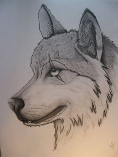wolf cool drawings wolves drawing awesome easy designs scarred animal sketches draw animals amazing deviantart very imgkid drawn python turtle