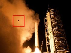 This Spectacular Photo Shows A Frog Photobombing NASA's Recent Rocket Launch