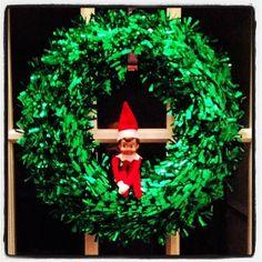 Elf on the Shelf: Stuck in a wreath.