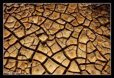 """Qeshm Island / Hormozgan / Iran""""Texture"""""""