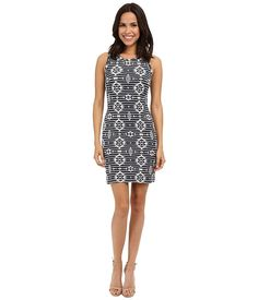 Karen Kane Women's Knit Jacquard Dress *** Special  product just for you. See it now! : Dresses for women