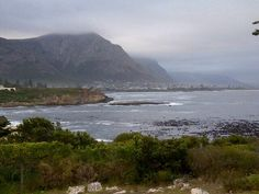 Love living in #Hermanus  where I'm so close to #nature.Take a #shotleft to this beautiful town! #travelchatSA
