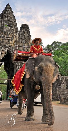We rode an elephant up to a temple to watch the sunset.  We left before the sun set as there were MANY people and one narrow very steep staircase down. Siem, Reap, Cambodia