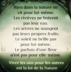 pour bien démarrer la journée et créer sa vie chaque jour avec motivation et bienveillance Motivation, Be Light, All Eyez On Me, Quote Citation, French Quotes, Sweet Words, My Mood, Positive Attitude, Positive Affirmations