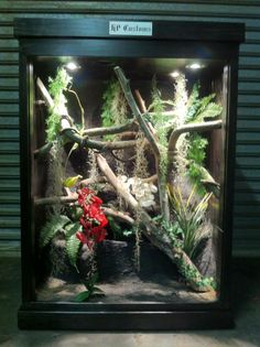 This HP Customs Reptile Enclosure has a running water fall and 2 orchids. It was custom made for a Green Tree Python.   https://www.facebook.com/pages/HP-Customs-Custom-Reptile-Enclosures/572704122760765