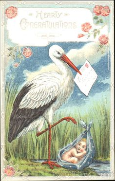 Divided Back Postcard Hearty Congratulations Storks Baby Stork, Hearty Congratulations, Baby Mine, Auction Items, Illustrations, Baby Cards, Vintage Postcards, Birthday Wishes, Bring It On