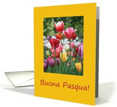Italian Buona Pasqua - Happy Easter - Multicolored Tulips Card