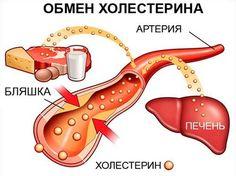 О вреде холестерина для организма человека слышали все, причем неоднократно, и с разных источников информации, однако мало кто знает о том, что это вещество является одним из основных строительных компонентов клеточной мембраны, а также выполняет множество др�