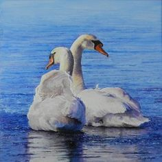 """Sandy Meyer. Us. Swans. """"And there, floating and bobbing,was every bit of her unsinkable spirit."""" Monique Duval"""