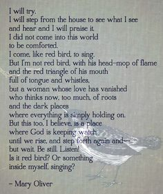 """I did not come into this world to be comforted. I come, like red bird , to sing ... I will try"" -Mary Oliver"