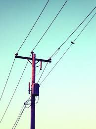 Image result for telephone pole