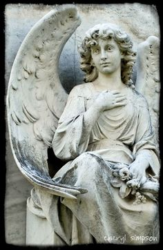 """""""ME ?? YOU'RE ASKING ME ???........HOW WOULD I KNOW --- I'M ONLY AN ANGEL.........TRY """"GOOGLE"""", THEY KNOW EVERYTHING""""................ccp"""