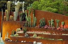 This organic sculpture is on permanent display in Sydney's Royal Botanic Gardens…