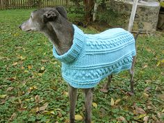This is a pattern to crochet a sweater for a Greyhound or similar size dog. Description from crochette.net. I searched for this on bing.com/images