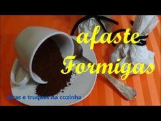 47º SAIBA COMO AFASTAR AS FORMIGAS DA SUA COZINHA E CASA - YouTube