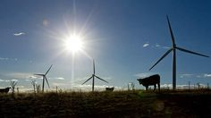 Joe Hockey warns clean energy and 'utterly offensive' windfarms are in his budget crosshairs  Read more: http://www.smh.com.au/federal-politics/political-news/joe-hockey-warns-clean-energy-and-utterly-offensive-windfarms-are-in-his-budget-crosshairs-20140502-37msv.html#ixzz31Jfe5Y2E