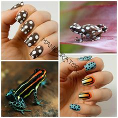 manicurator: Marañón Poison Frog Nail Art - Digit-al Dozen Animal Week
