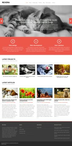 Free Really Responsive WordPress Themes