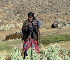 Ethiopia, Bale Mountains region