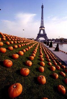 Les champs d'honneur de Anne Hidalgo Absolutely briliant #Halloween #Paris #Autumn