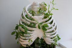 ceramic art Agglutination Finished sculpture for my year 12 Studio Arts class using Oz Clay, Plaster of Paris, and sweet peas Plaster Of Paris, Deco Floral, Home And Deco, Art Studios, Ceramic Art, Ceramic Bowls, Indoor Plants, House Plants, Creations