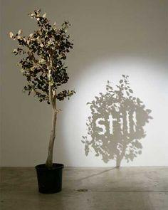 影が伝えるメッセージアート「Shadow Art」