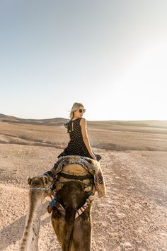Camel views in Morocco via @FindUsLost Follow yonce & get posts on the daily @hayleybyu