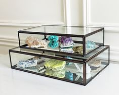 Crystal Mineral Specimen Collection in Glass Display Box, Crate & Barrel Clarus Display Box