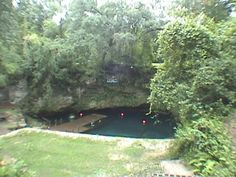 Blue Grotto - Scuba Diving this Florida sinkhole Game Modding, Underwater Pictures, Degree Angle, Winter Park, Scuba Diving, Missouri, Homesteading, Picture Video, Places To Go