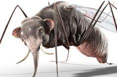 Van een mug een olifant maken