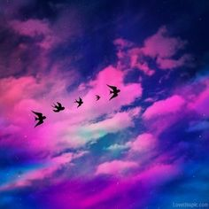 Flying birds colorful sky clouds stars birds