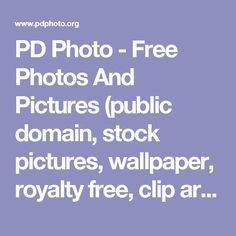 PD Photo - Free Photos And Pictures (public domain, stock pictures, wallpaper, royalty free, clip art, etc)