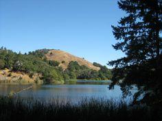 Lake Lagunitas, Marin county, Ca