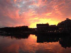 sunset - Stonington, ME harbor