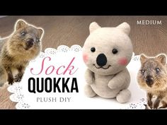 Quokka DIY Sock Plush - Adorable Money-Saving Craft Project - YouTube