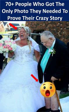 #70 #people who #got the #only #photo they #needed to #prove their #crazy #story #crazy #funny Pet Day, Weird Stories, Crazy Funny, Dares, Bro, Supreme, Connect, Cute Animals, Humor
