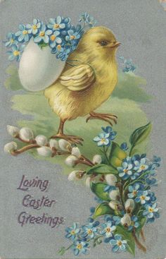 yellow chick with blue flowers in egg