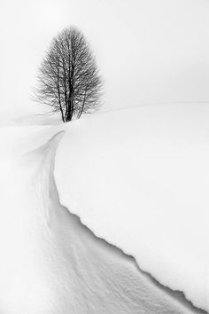 The ditch in the snow is used as a lead in line to the vanishing point in the horizon.