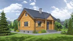 DOM.PL™ - Projekt domu DP hoczew mała 9 dws CE - GARAŻ PK9-11 - gotowy projekt domu